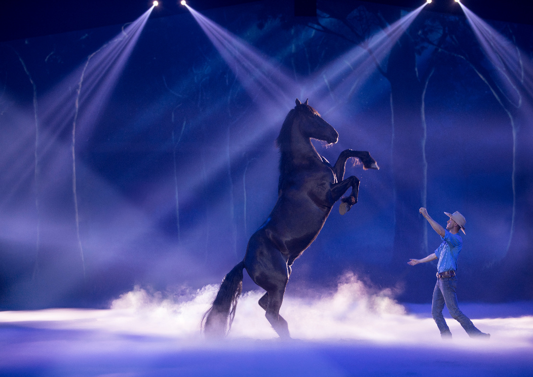 Horse Rearing at Australian Outback Spectacular during show