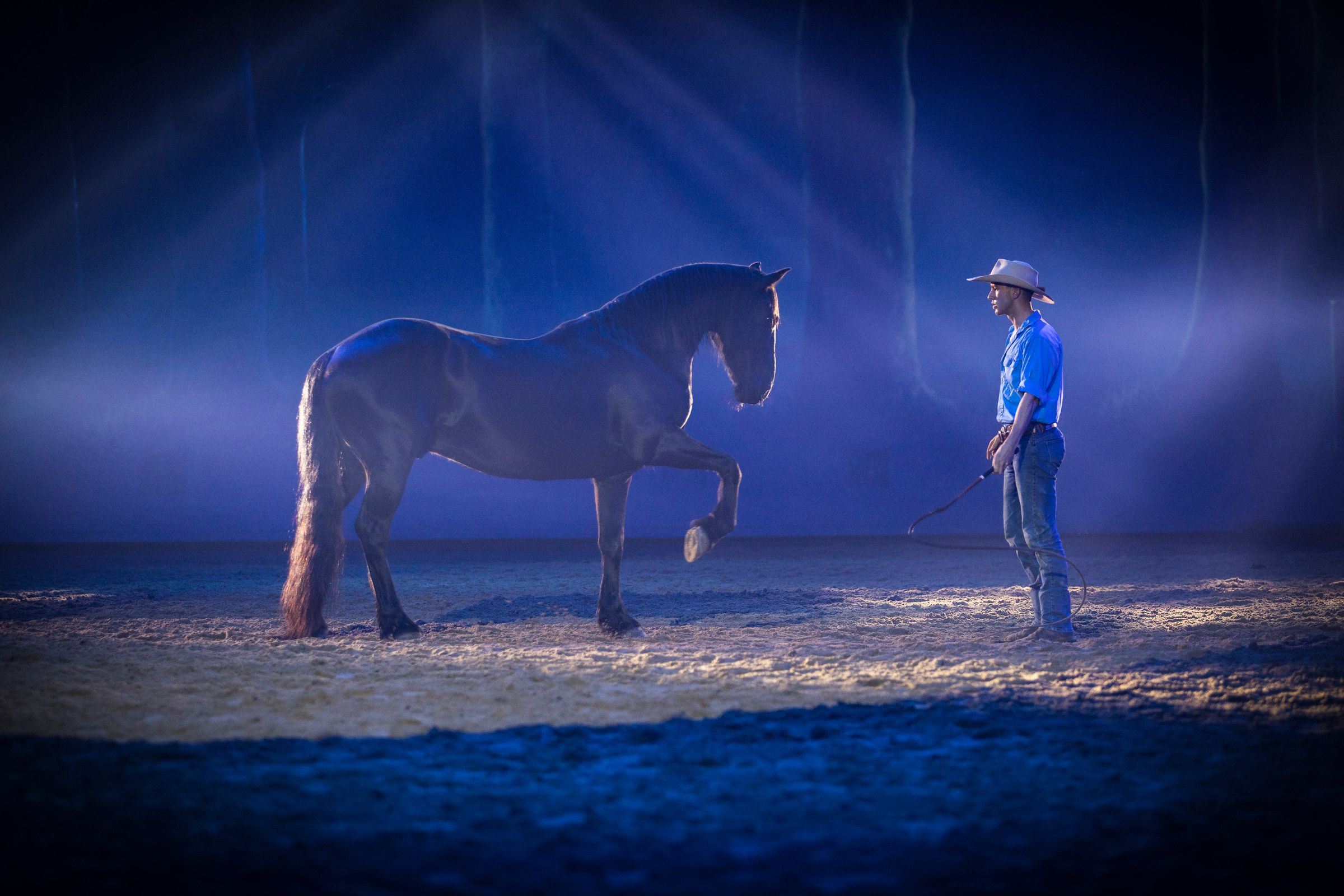 Horse in australian outback spectacular show with man
